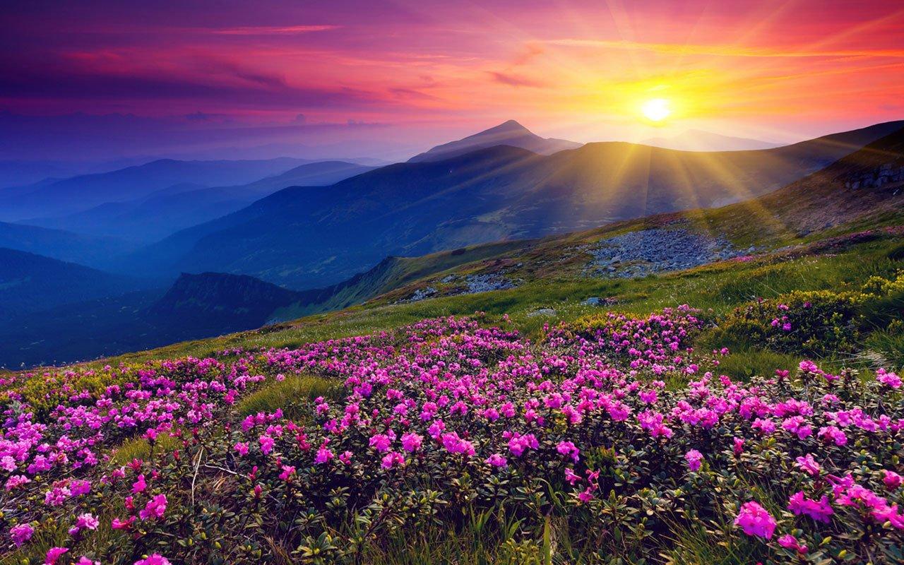 Сегодня утром взошло самое маленькое солнце в году