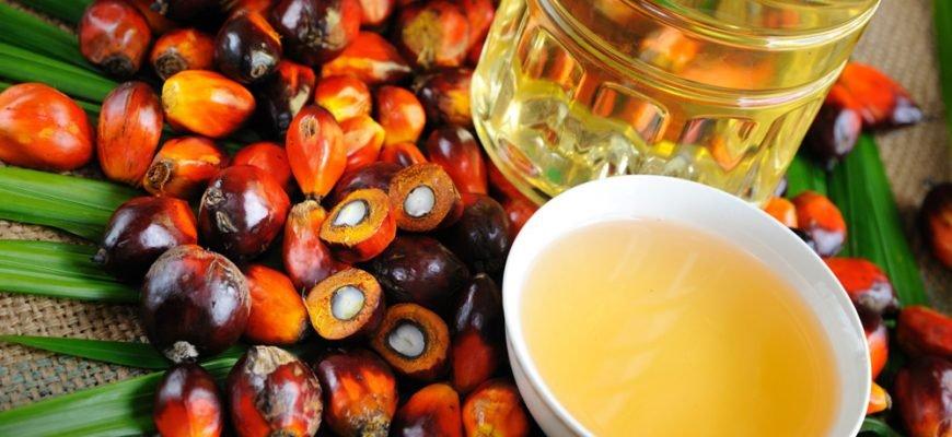 Малайзия сохранит нулевые экпортные пошлины на пальмовое масло в сентябре