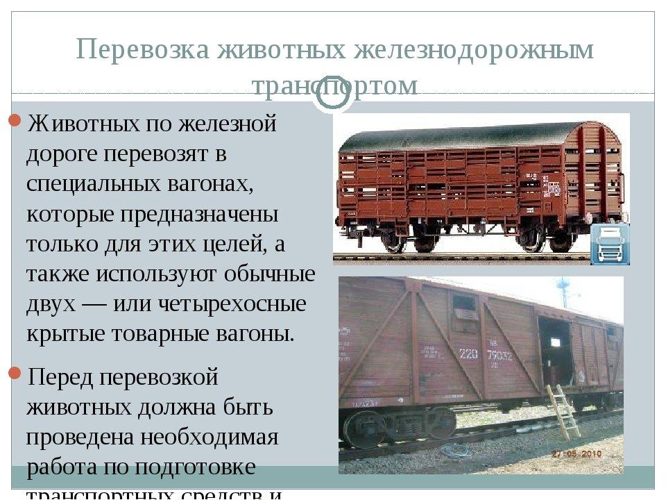 """d3bca3dd437c41638ce08907b32378a3 - """"Грязный хлев"""": блогер оценил украинский поезд """"Интерсити"""""""