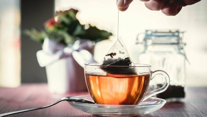Бактерии и плесень: чем опасен неправильный чай