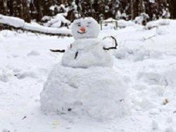 """В Калуге неизвестные вандалы уничтожили """"парад снеговиков"""""""