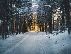 В Гидрометцентре рассказали об экстремальных холодах в регионах