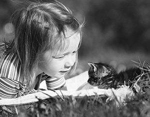 Российские ученые разработали вакцину против аллергии на кошек