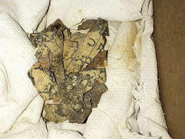 Скелет ребёнка в Пещере ужасов: археологи исследуют утесы Мертвого моря