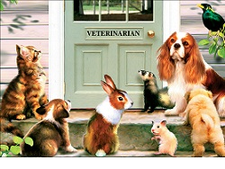 В Госдуму внесли законопроект о регистрации домашних животных