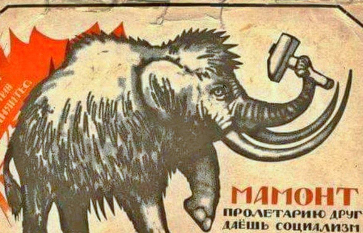 Власти Якутии собрались разводить клонированных мамонтов