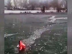Парень утонул в пруду на северо-востоке Москвы, бросившись на помощь щенку