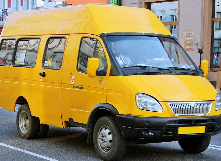 «Выглядит как проститутка»: в Подмосковье водитель выгнал школьницу из маршрутки