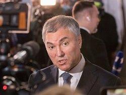 Мать Вячеслава Володина задолжала налоговой службе