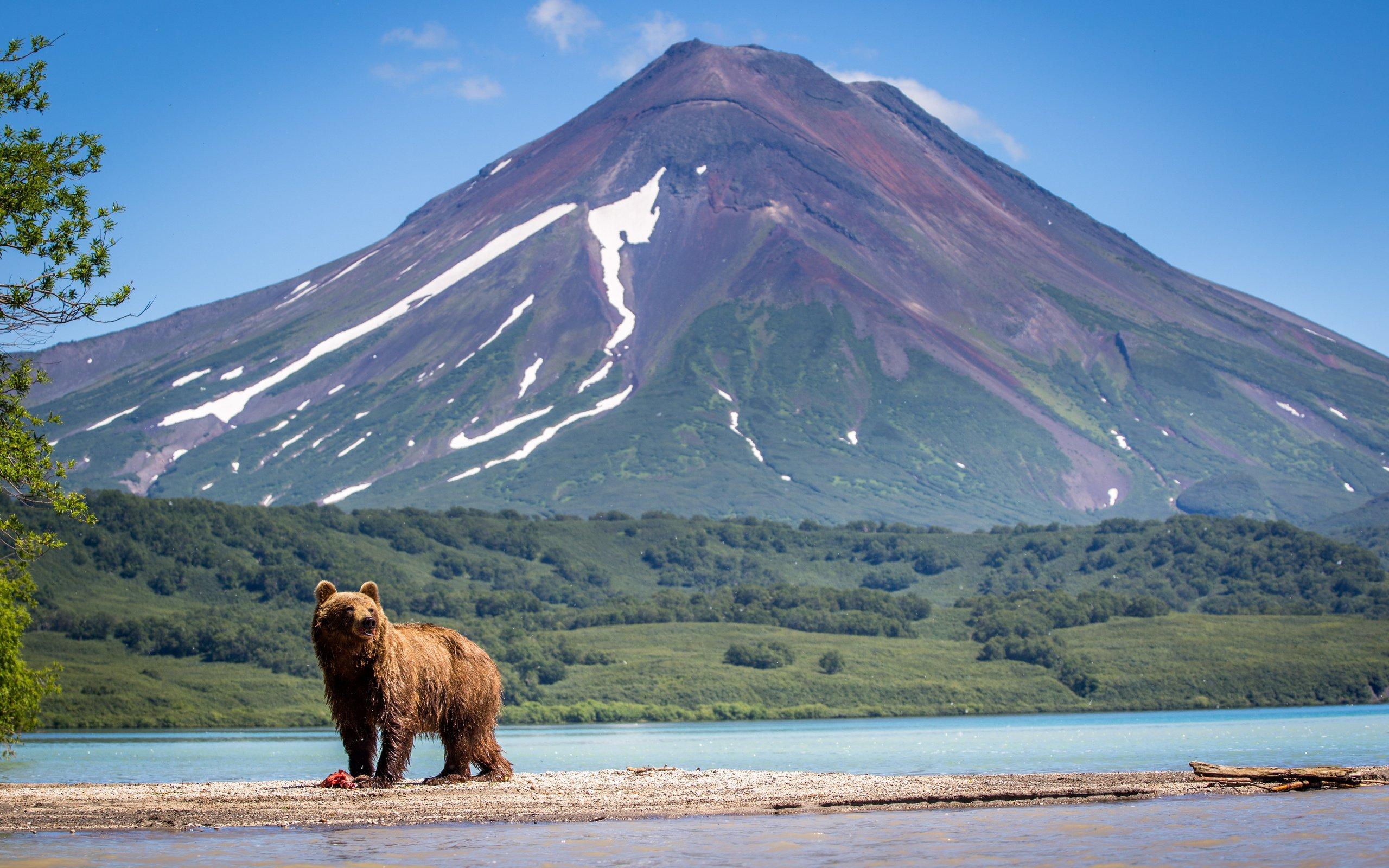 На Дальнем Востоке и в Арктике рассмотрят более 300 проектов развития